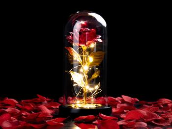Spralla® Fortryllet Rose Lampe